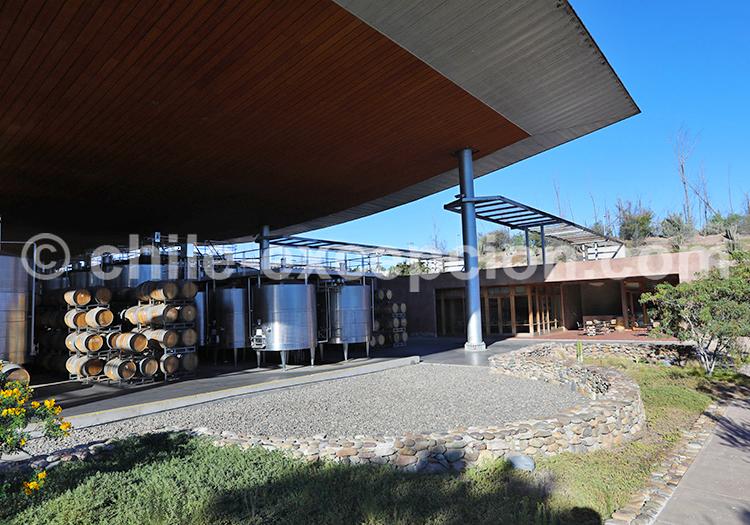 Visite du vignoble Tabali, Chili