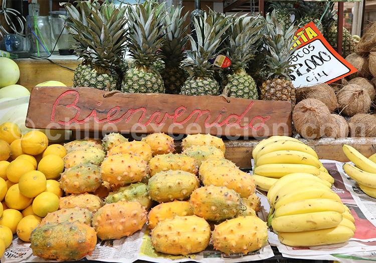 Fruits du monde, Chili