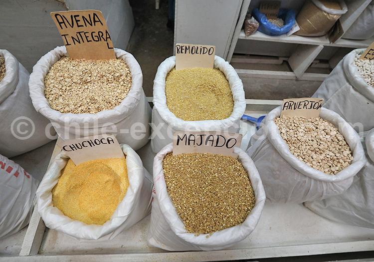 Feria Modelo de Ovalle, Chili