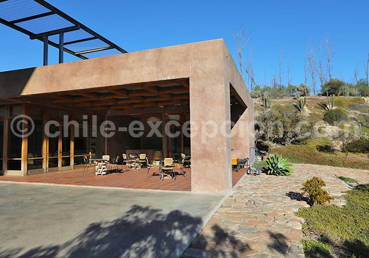 Visite guidée viña Tabali, Chili