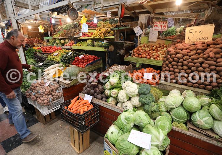 Feria Modelo de Ovalle, commerce au Chili
