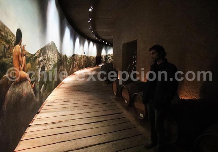 Visite guidée vigne Tabali, Chili