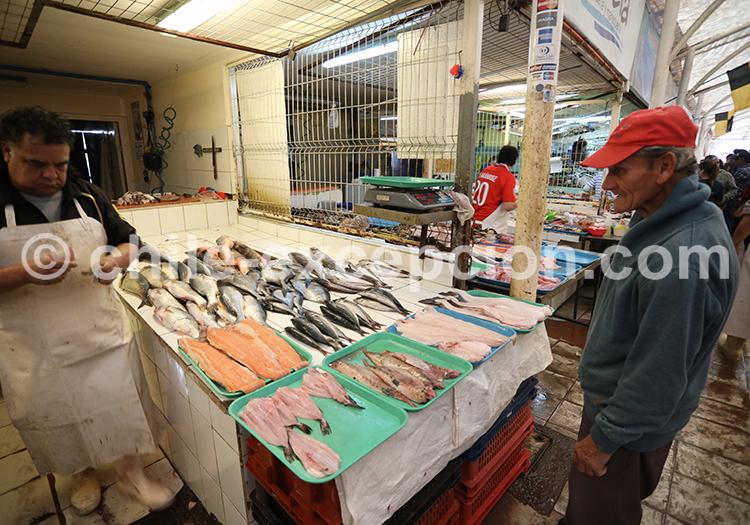 Étals de poissons, Coquimbo