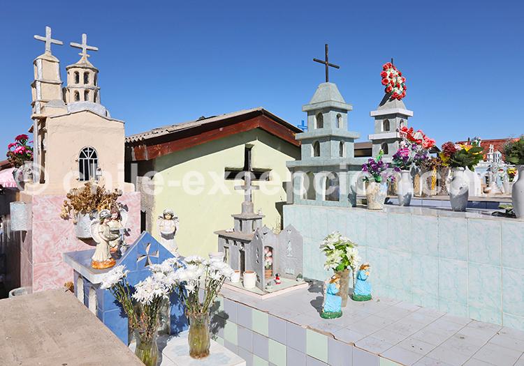 Immersion culturelle au Chili