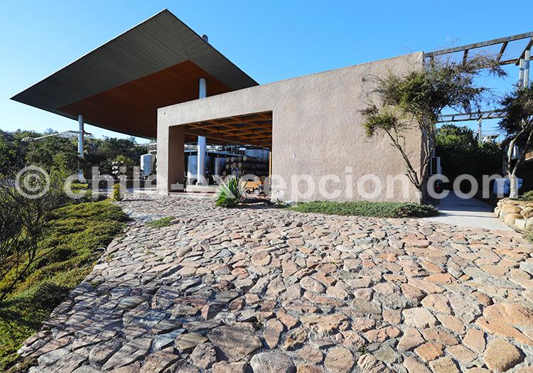 Bodega, viña Tabali, Chili