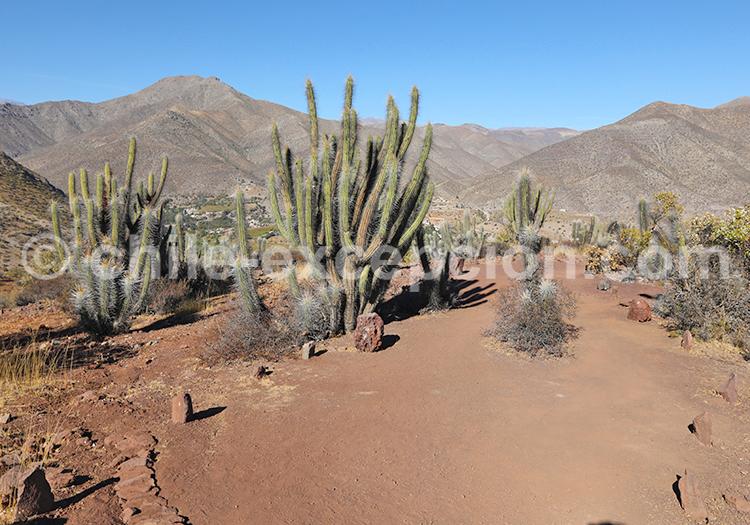 Monument Naturel Pichasca, Ovalle