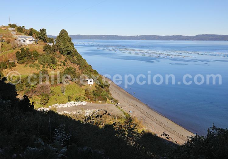 Île de Lemuy, Chiloé