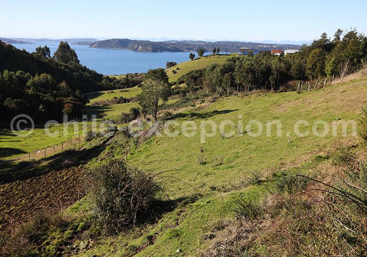 Île de Lemuy, province de Chiloé