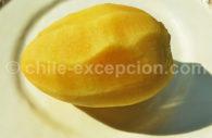 Pepino melón