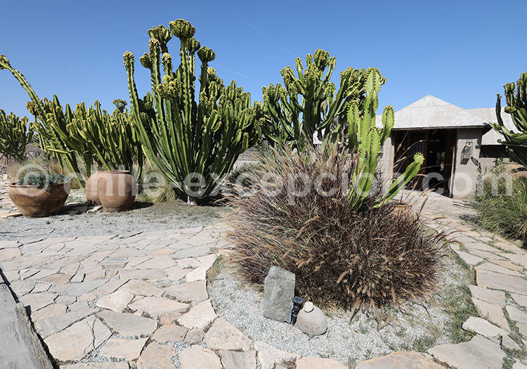 Hôtel de luxe, Atacama