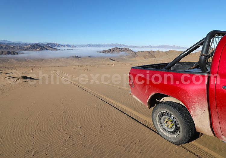 Dunes de Copiapó, Chili