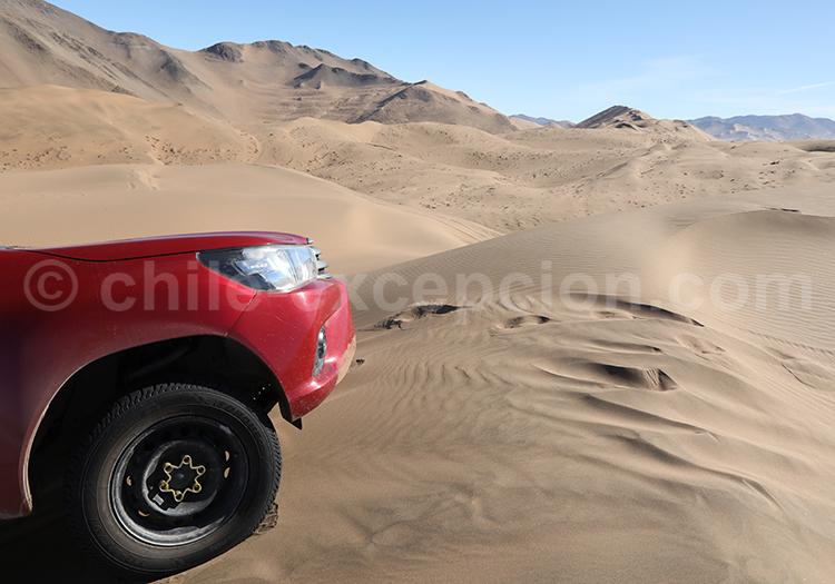 Tour guidé, dunes de Copiapo, Chili