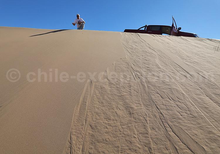 Agence de voyage locale francophone au Chili