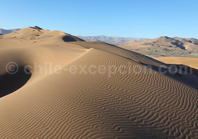 Dakar route and Atacama Dunes