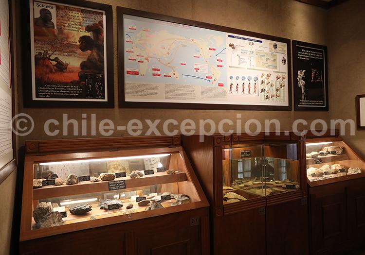 Connaître l'histoire du Chili