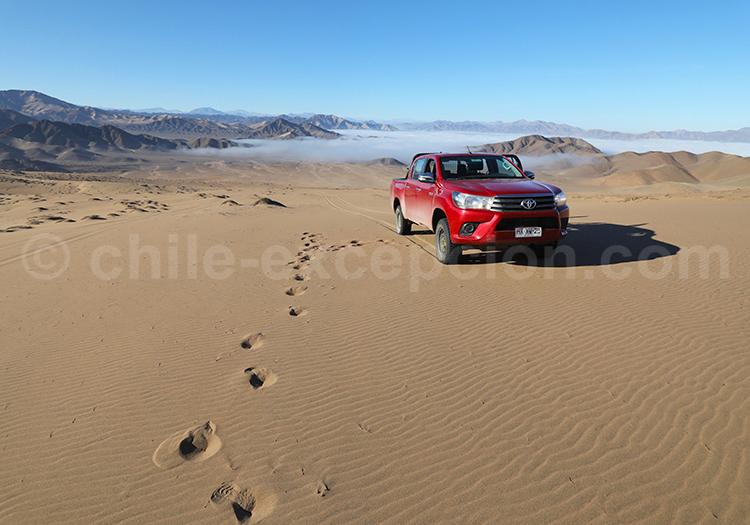 Dunes de Copiapo, Nord du Chili