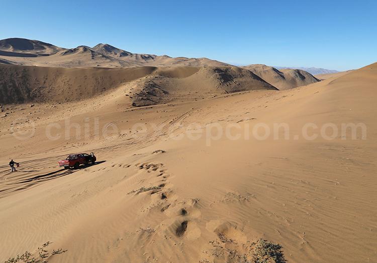 Dunes de Copiapo, Chili