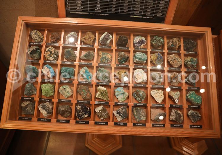 Amateur de minerais, musée des mines, Chili