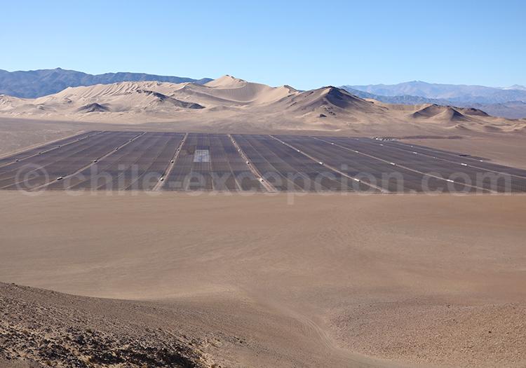 Dune Medanoso, Atacama