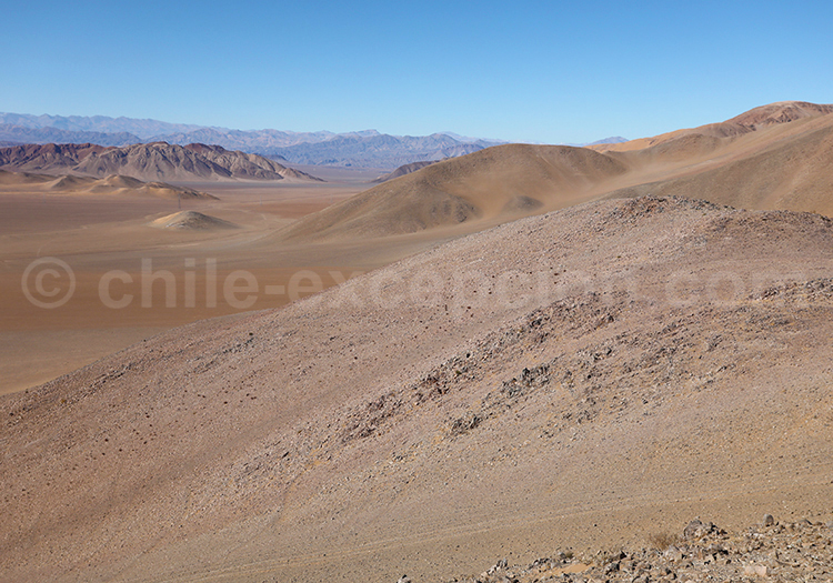 Psamnotourisme au Chili