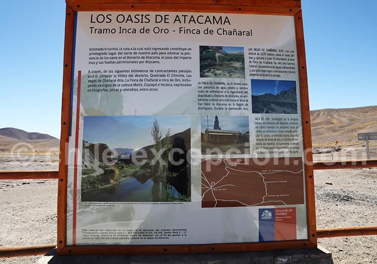 Peintures del Oasis de la Finca de Chañaral