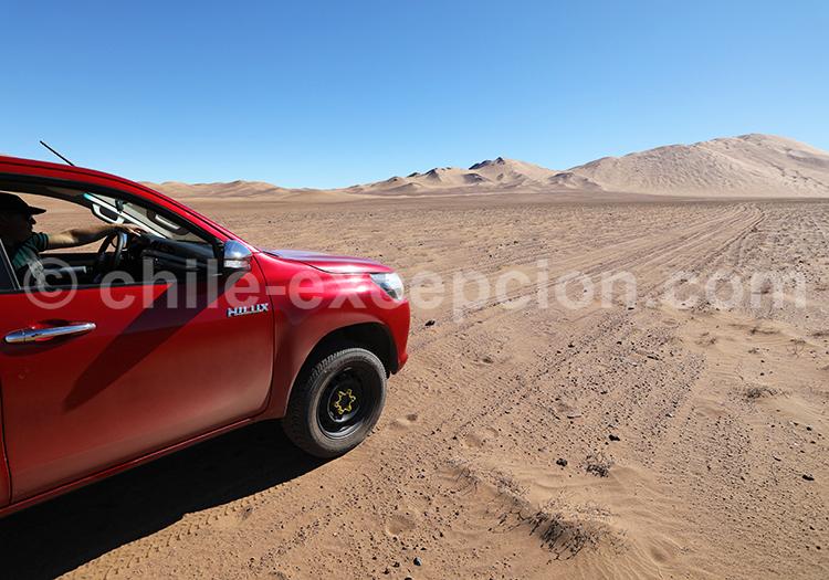 Voyage au coeur des dunes de Medanoso, Copiapo