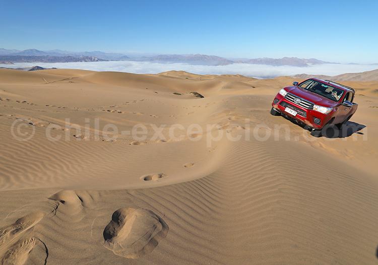 Dunes du désert, Nord du Chili