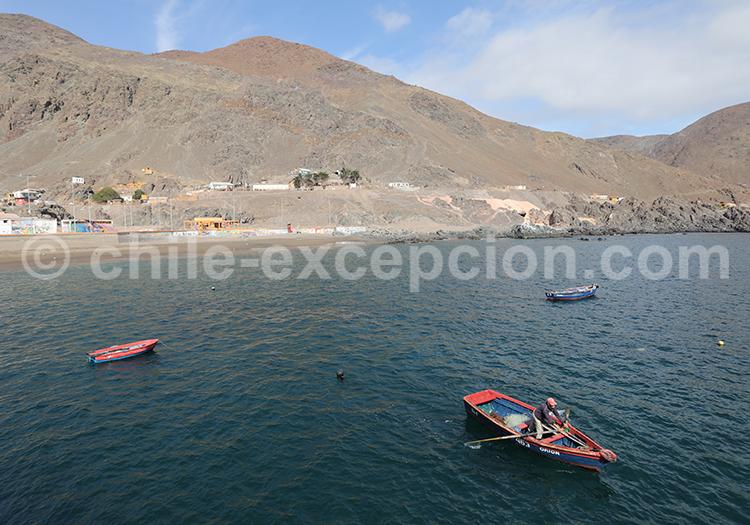 Pêcheurs des Andes, Taltal, Chili