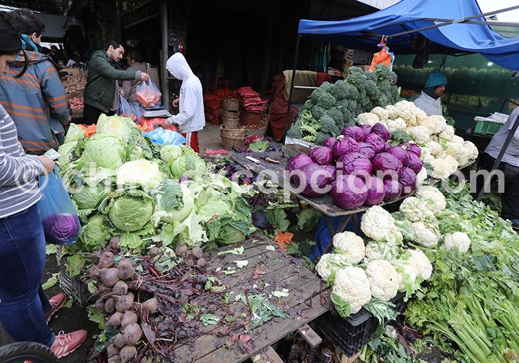 La Vega, marché typique de Santiago de Chile