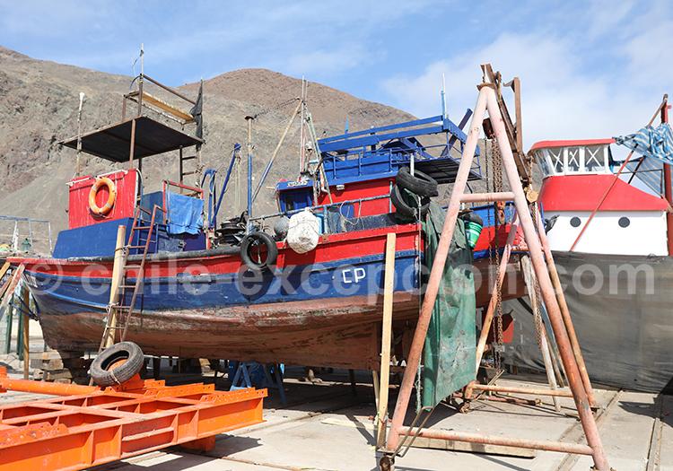 Port de pêche, Taltal, Chili