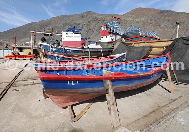 Bateau de pêche, Nord du Chili