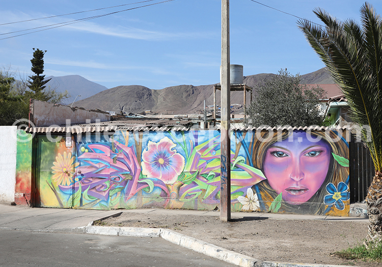 Découvrir les rues du Nord du Chili