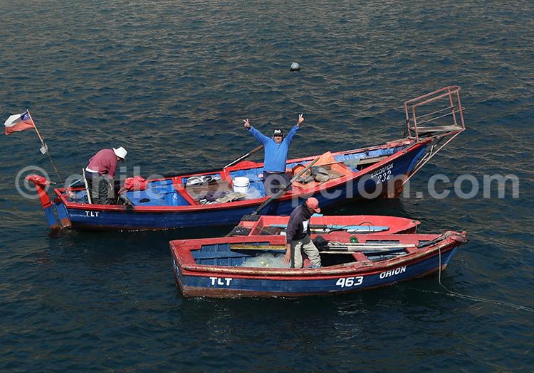 Pêcheurs du village de Taltal, Chili
