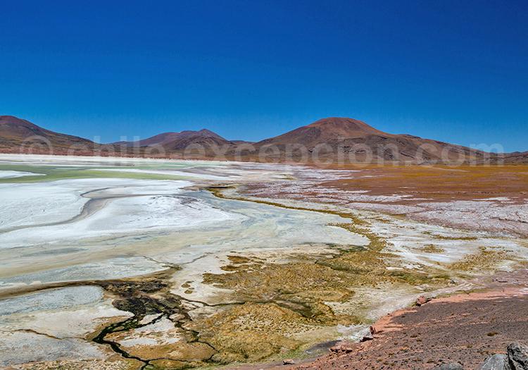 Lagune, San Pedro de Atacama