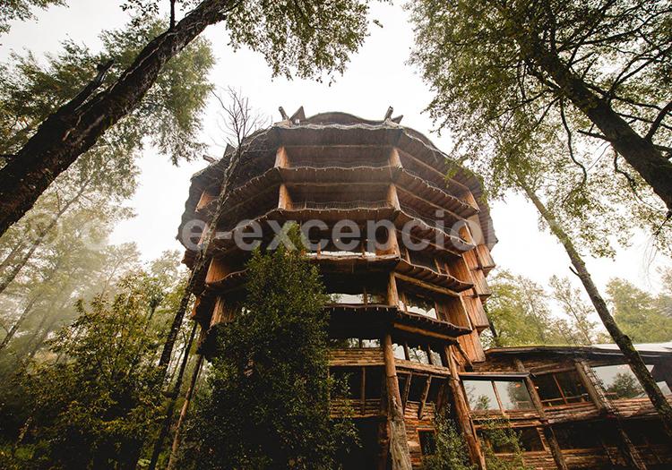 Lodge Reino Fungi, Huilo Huilo