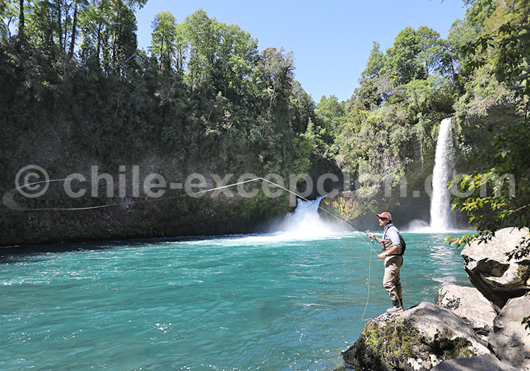 Pêche dans le rio Riñinahue, parc Futangue