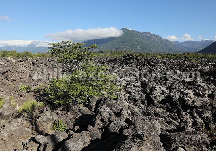 Escorial du volcan Llaima