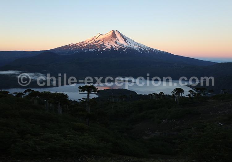 Randonné au Parc National Conguillio, Chili