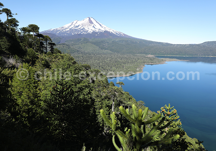 Volcan Llaima, Lac Conguillio