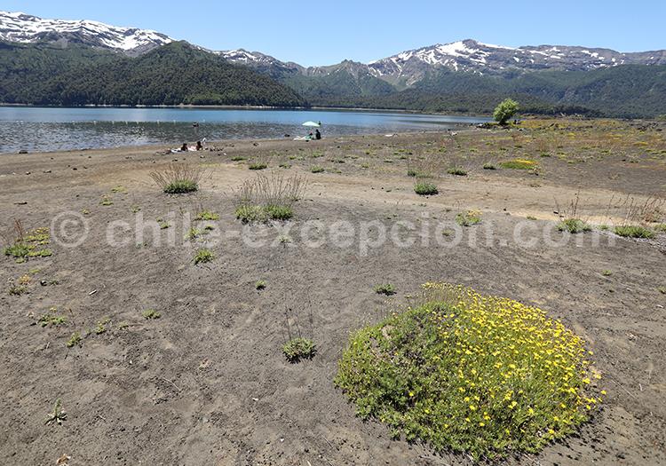 Lac Conguillio, Chile