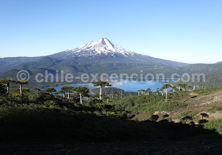 Parc National Conguillio, région des lacs et volcans, Chili