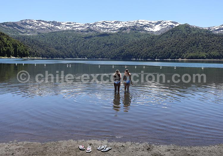 Baignade au lac Conguillio