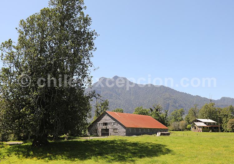 Parc Futangue