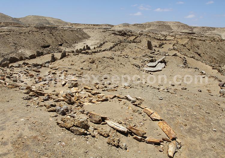 Tourisme archéologique au Chili