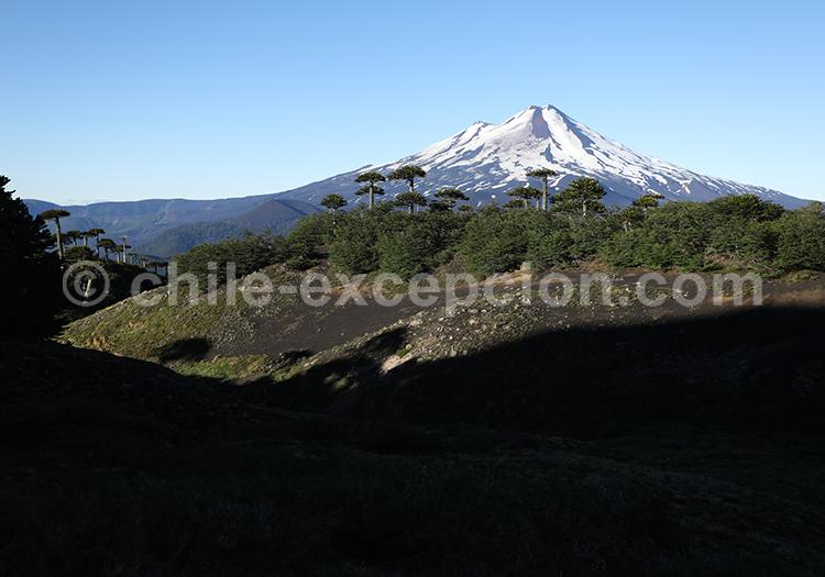 Volcan Llaima, Parc National Conguillio, Chili