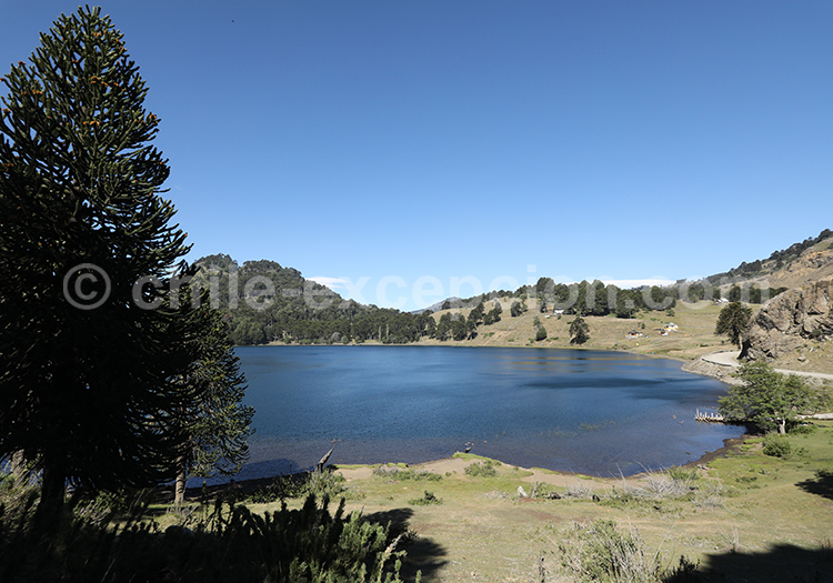 laguna Chica de Icalma