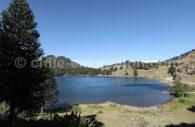 Laguna Chica Icalma