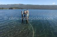 Laguna de Icalma