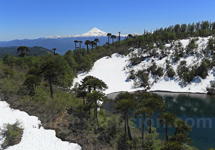 Réserve nationale Villarrica