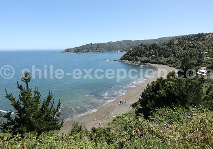 Los Molinos, région des lacs, Chili